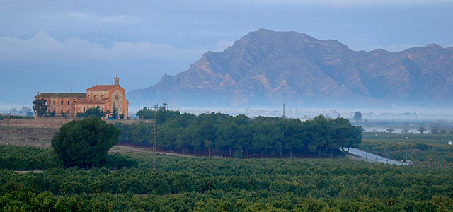 Property for Sale in Algorfa, Costa Blanca, Spain.